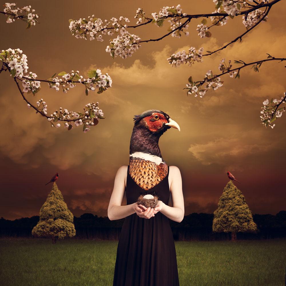 A-Bird-in-the-Hand-Irene-Liebler