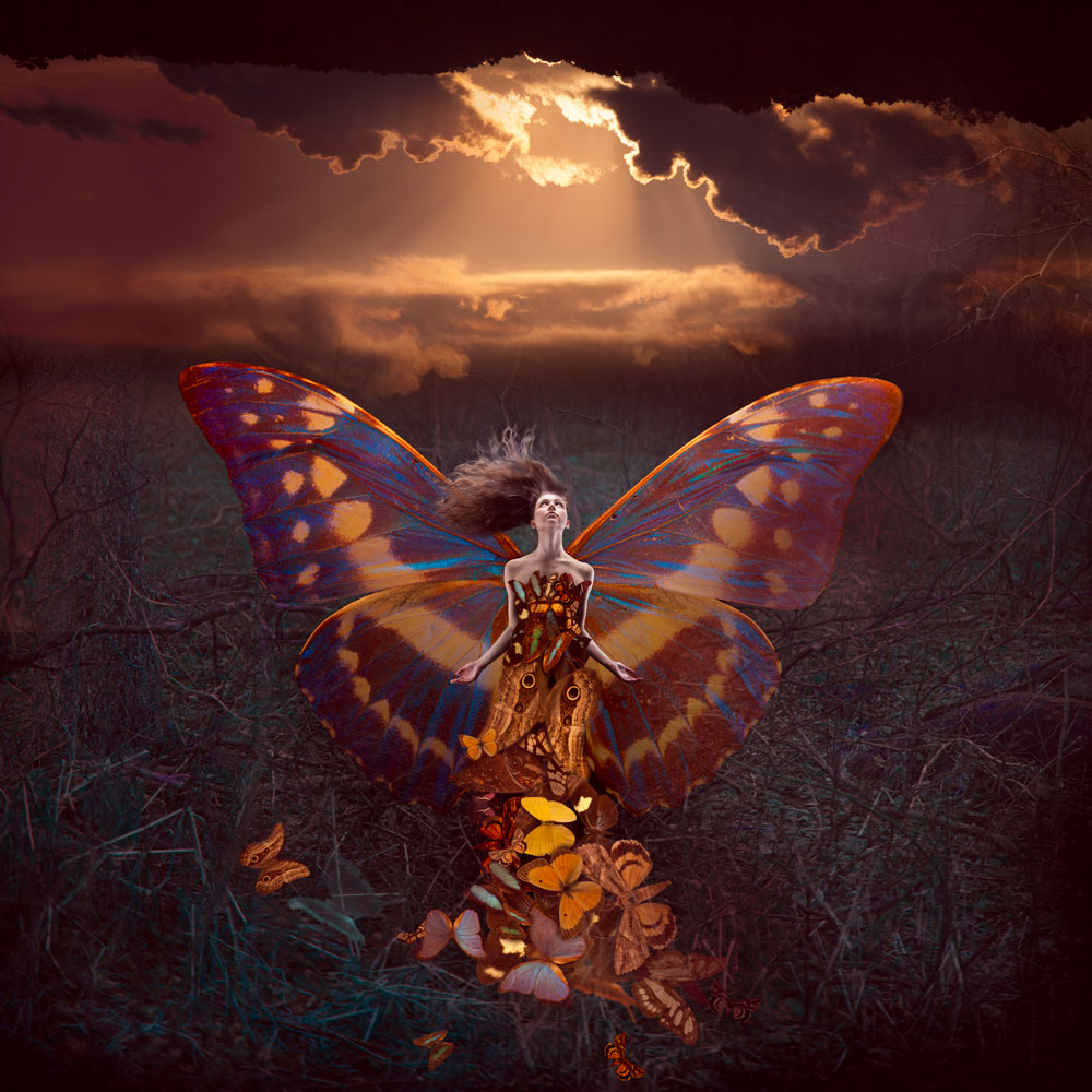 irene-liebler-Rachel-Butterfly-final